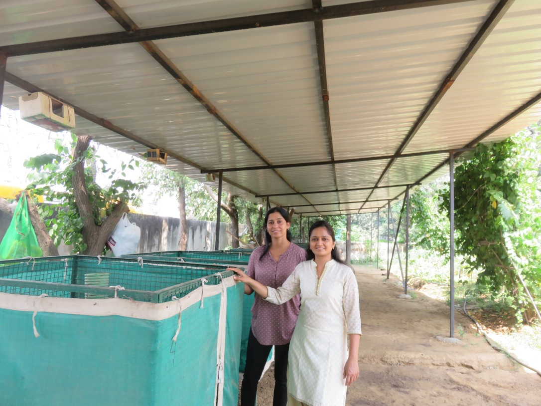 Do-It-Yourself, Natural Composting Set-Up at Malibu Town, Gurgaon
