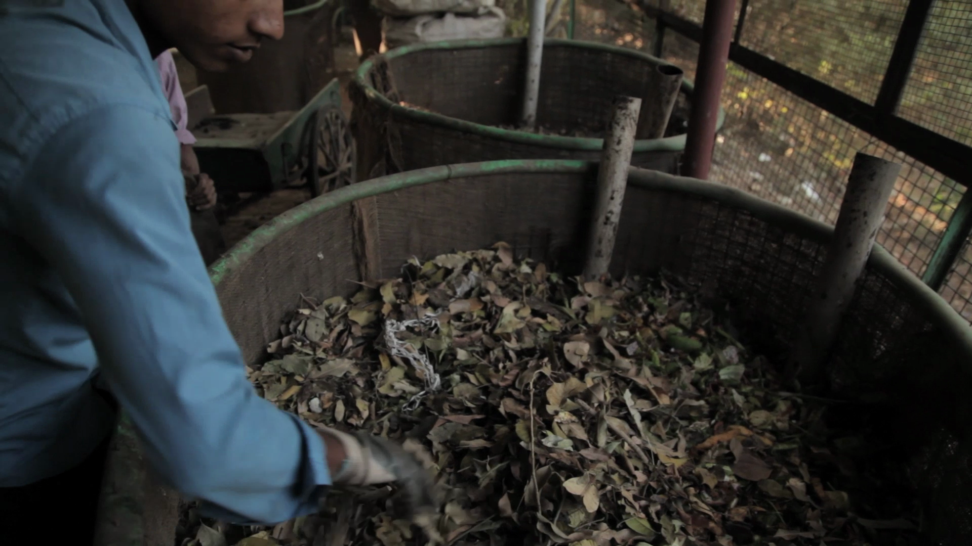 Housekeeping boys have been trained to cover the food waste properly with the leaves to ensure no smell or flies