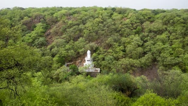 Mangarbani sacred temple